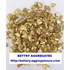 Gold coated glass chip
